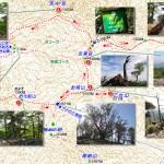 322_Map