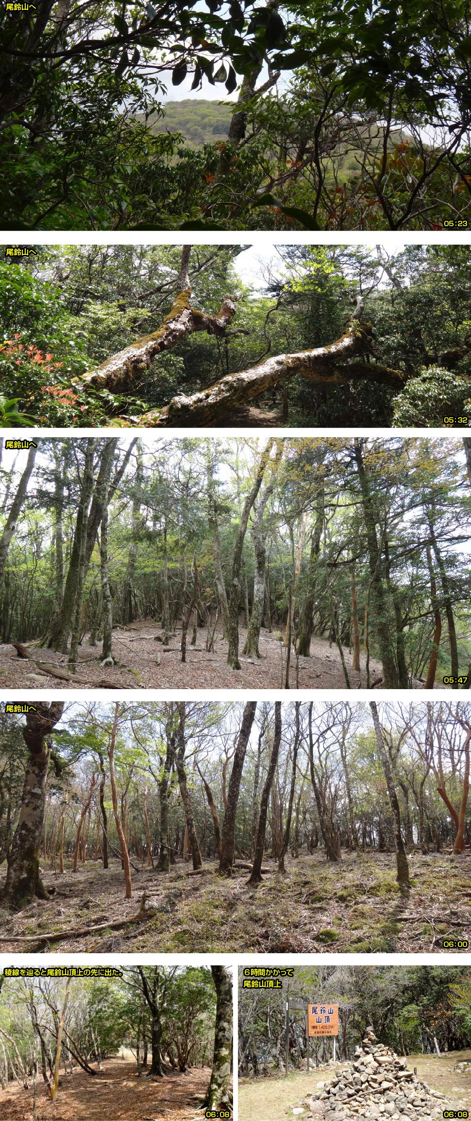 尾鈴山へのルート