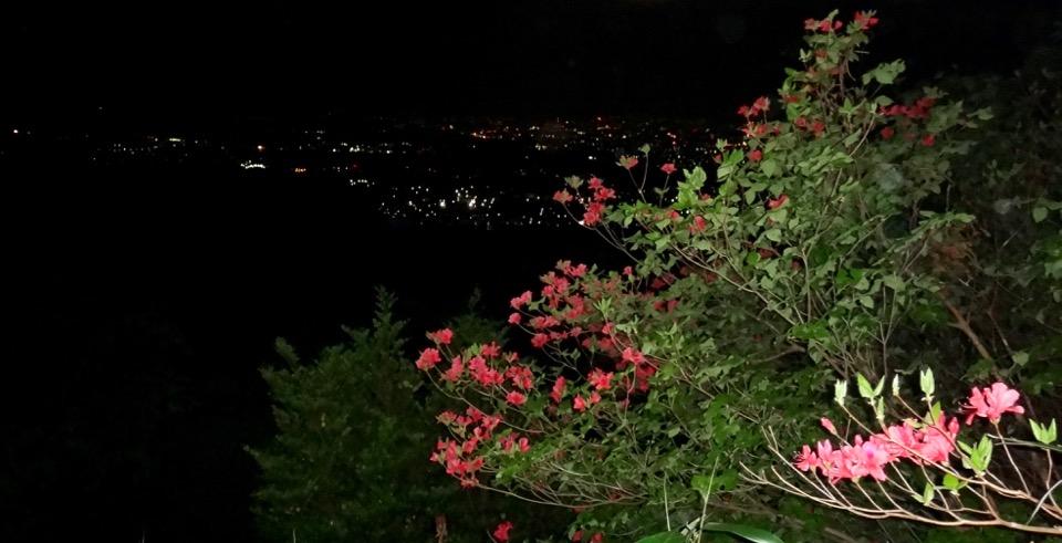 斟八神社夜景